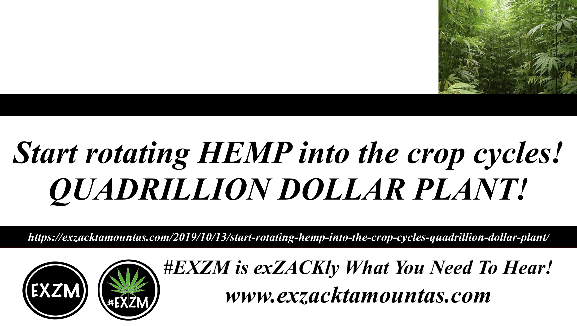 Hemp Needs To Rotate With Crops EXZM Official 10 13 2019