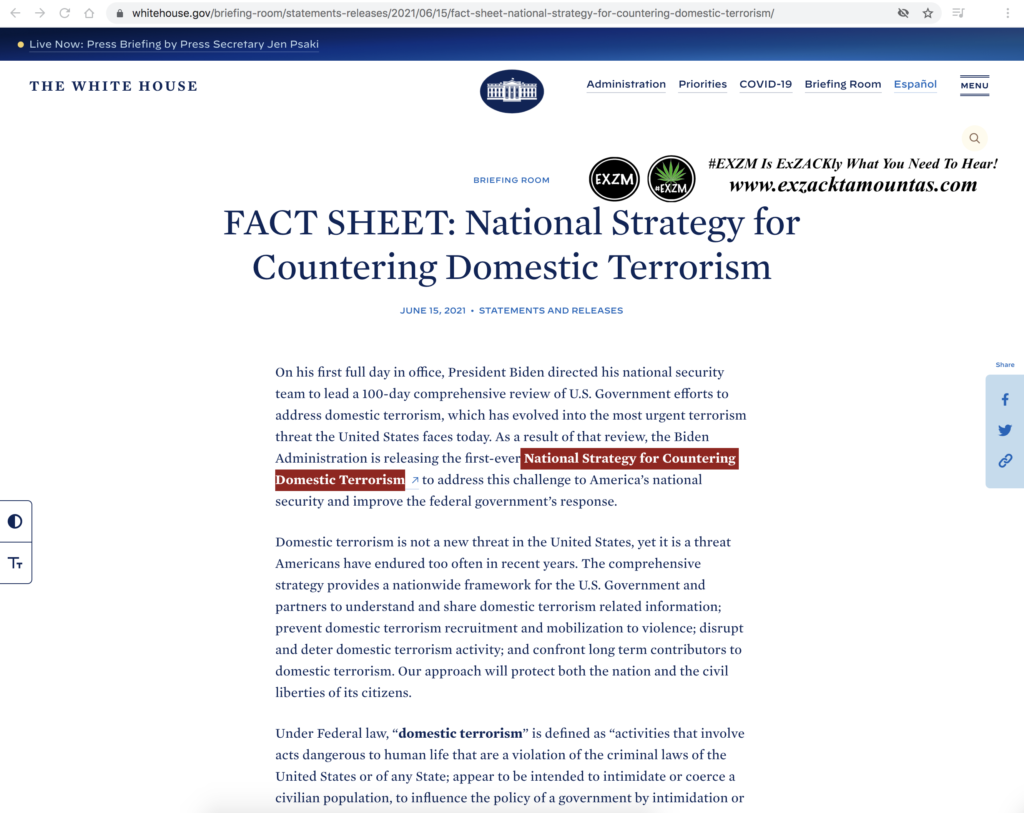 National Strategy for Countering Domestic Terrorism EXZM Zack Mount June 15th 2021 2 copy