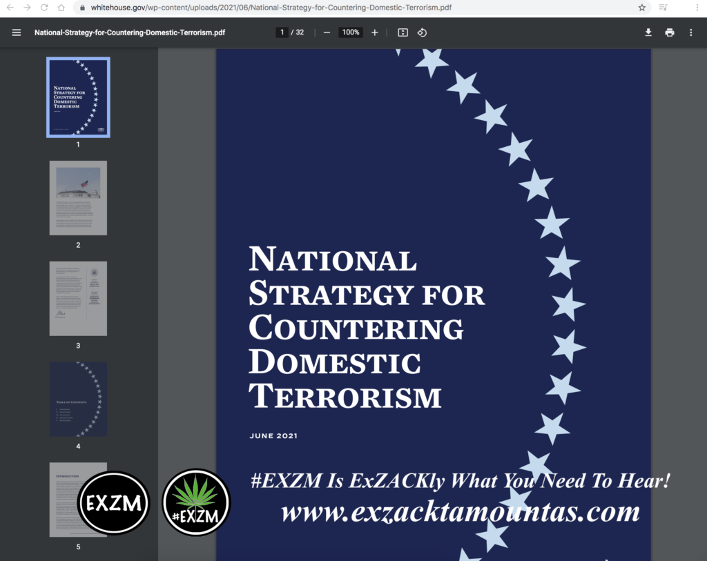 National Strategy for Countering Domestic Terrorism EXZM Zack Mount June 15th 2021 copy