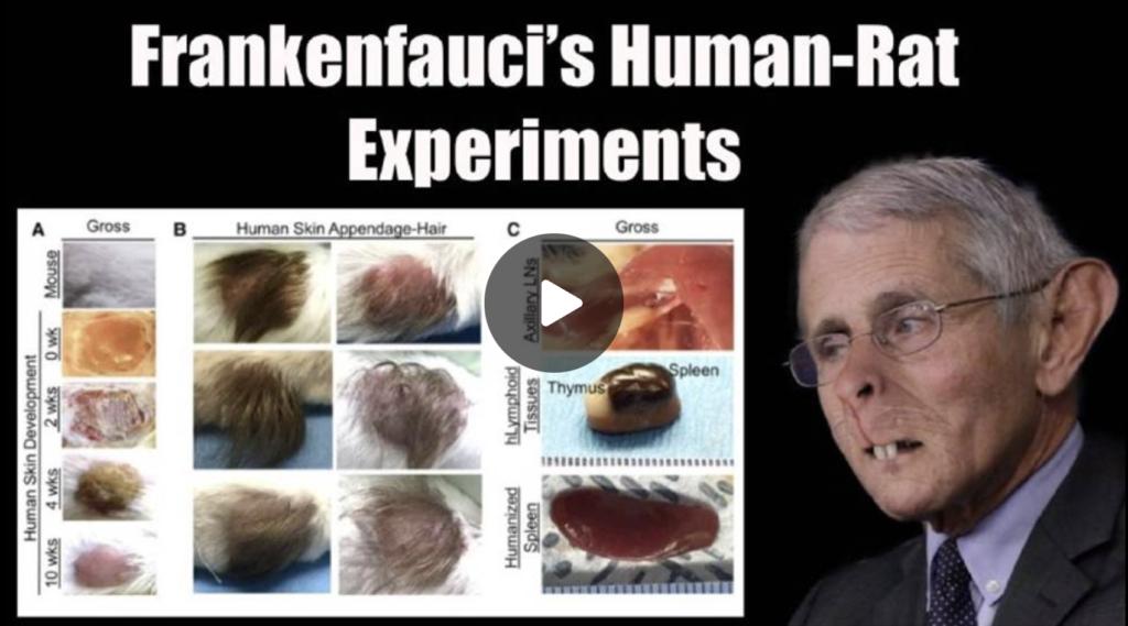 Frankenfaucis Human Rat Experiments EXZM Zack Mount September 16th 2021