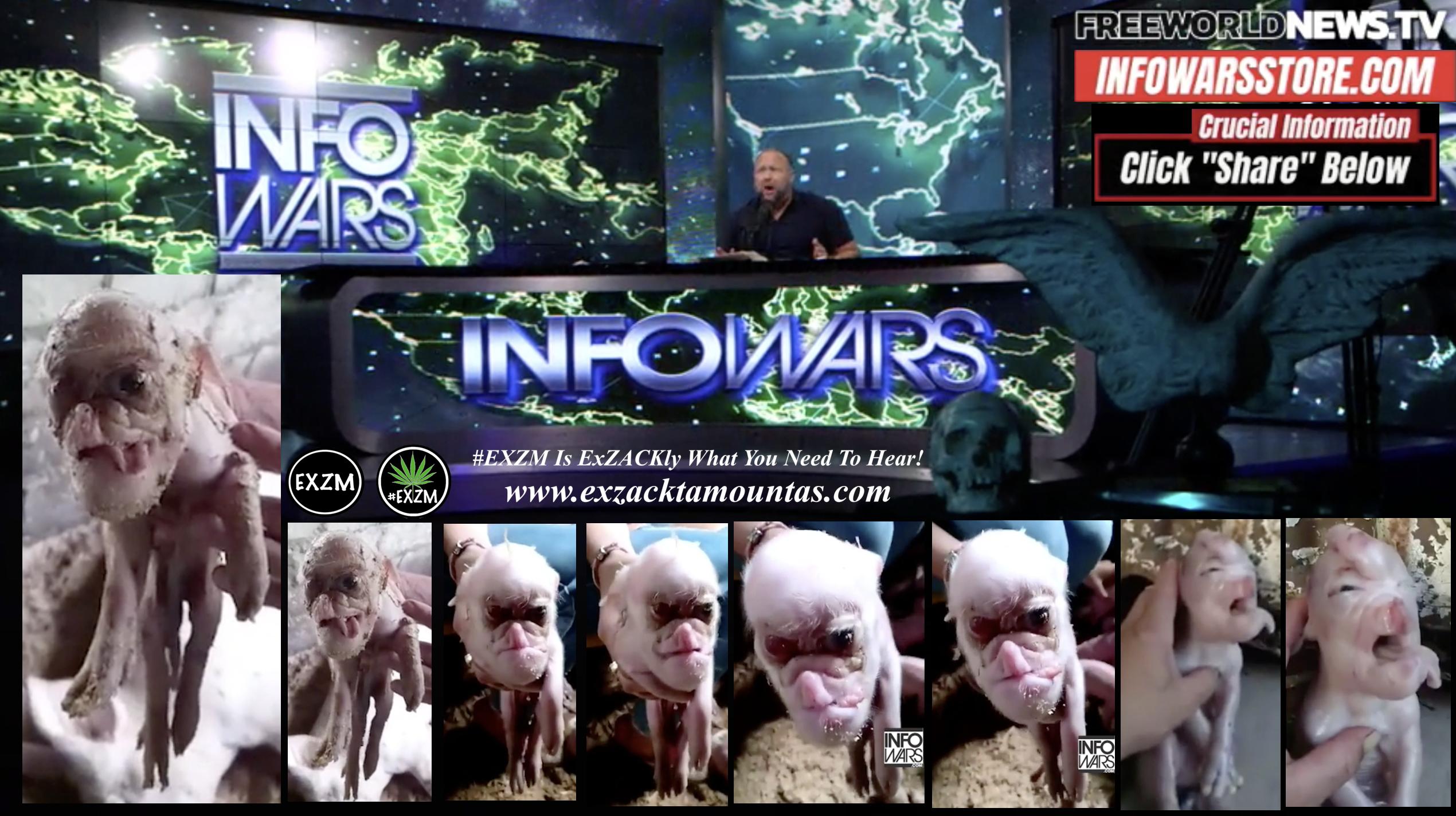 Alex Jones Live In Infowars Studio Human Skull Angel Wings Dagger Human Pig Hybrids Free World News TV EXZM Zack Mount October 7th 2021 copy