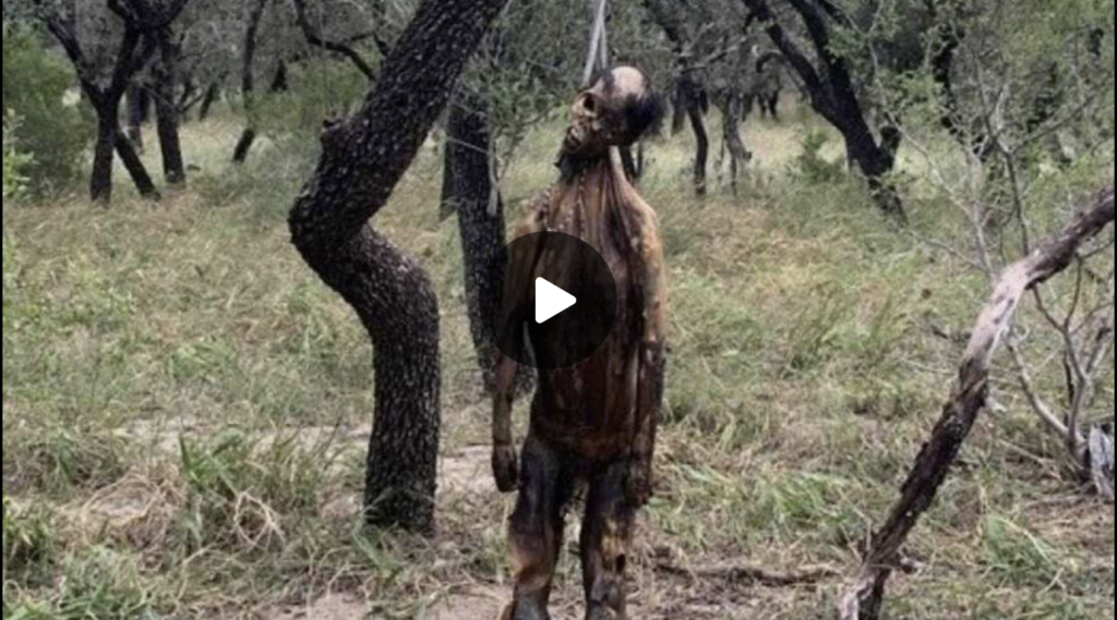 Democrats Ignore Lynchings At The Southern Border EXZM Zack Mount October 5th 2021